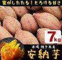 【ふるさと納税】種子島産 安納芋 7kg