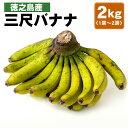 【ふるさと納税】徳之島産 三尺バナナ 2kg (1房から2房)フルーツ 果物 バ