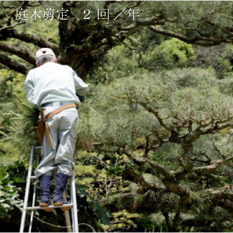【ふるさと納税】お庭の植木剪定サービス(2日間)