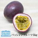 【ふるさと納税】沖永良部トケイソウ「パッションフルーツ」1kg