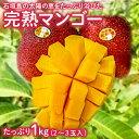 【ふるさと納税】 石垣島の完熟マンゴー 1kg 2〜3玉 6...