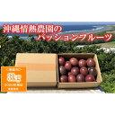 【ふるさと納税】【2020年発送】沖縄情熱農園のパッションフルーツ3kg<家庭用>