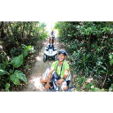 【ふるさと納税】沖縄の空の下気分爽快!糸満ジャングルバギー体験ツアー(中人2名様)