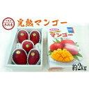 【ふるさと納税】【2020年発送】沖縄県糸満産 完熟マンゴー約2kg
