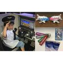 【ふるさと納税】飛行機マグネット&パイロットが教える操縦体験20分|沖縄 パイロット 操縦 体験 キーホルダー マグネット トレーディングカード