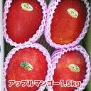 【ふるさと納税】先行予約!南城市産アップルマンゴー1.5kg...