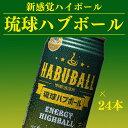 【ふるさと納税】琉球ハブボール24本 オリジナルT-シャツセ...