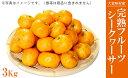 【ふるさと納税】【2019年12月より順次発送】完熟フルーツ...