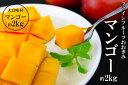【農園直送】ファインフルーツおおぎみマンゴー約2kg 2017年発送