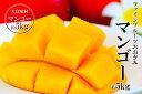【ふるさと納税】農園直送ファインフルーツおおぎみ 沖縄マンゴー約5kg