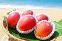 【ふるさと納税】農園直送ファインフルーツおおぎみマンゴー約2...