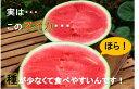 【ふるさと納税】【限定50個 配送開始】種が少ない食べやスイ...