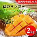 【ふるさと納税】【先行予約】緑のマンゴー・キーツ(2kg)2...