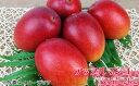 【ふるさと納税】沖縄県産マンゴー 秀品 2kg