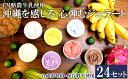 【ふるさと納税】【EM酪農牛乳使用】沖縄を感じる 心弾むジェラート24個セット
