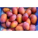 【ふるさと納税】【2020年発送 家庭用】ミナミマンゴーハウスの完熟マンゴー約2kg