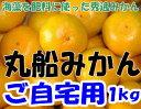 【訳あり】和歌山県有田産 丸船みかん S〜2Lサイズ1kg
