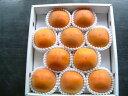【訳あり】糖度22度 全額返金保証 柿 和歌山 新秋柿 2Lサイズ 10玉 約2.2kg入 商品