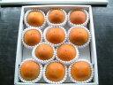 【訳あり】糖度22度 全額返金保証 柿 和歌山 新秋柿 Lサイズ 11玉 約2kg入 商品