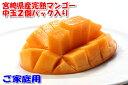 【訳あり】宮崎 マンゴー ご家庭用 Lサイズ中玉2玉 パック入 宮崎マンゴー 完熟マンゴー マンゴー