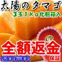 マンゴー 宮崎 太陽のタマゴ 2L 3玉 約1kg 化粧箱入...