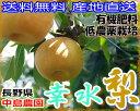 【訳あり】減農薬 長野産 幸水梨 約9キロ 24〜30個入 ...