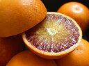 減農薬 愛媛産 タロッコ ブラッドオレンジ 約4.8kg 訳あり ワックス不使用 サイズ混合 産地直送 ore 3t