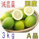 減農薬 愛媛産 レモン 3kg A品 国産 産地直送 ore