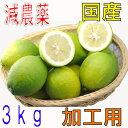 【訳あり】減農薬 愛媛産 レモン 3kg 加工用 国産 産地直送 ore