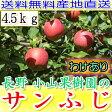 送料無料 糖度15度以上 長野 減農薬 有機肥料栽培 サンふじ 約4.5kg 12〜25個入 ご家庭用 完熟 林檎 リンゴ りんご 訳あり 売れ筋 セール 産地直送 さんふじ