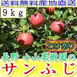 送料無料 糖度15度以上 長野 減農薬 有機肥料栽培 サンふじ 約9kg 24〜50個入 ご家庭用 完熟 林檎 リンゴ りんご 訳あり 売れ筋 セール 産地直送 さんふじ