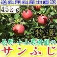 送料無料 糖度15度以上 長野 減農薬 有機肥料栽培 サンふじ A品 約4.5kg 12〜23個入 完熟 林檎 リンゴ りんご 売れ筋 セール 産地直送 贈答用 さんふじ