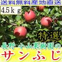 送料無料 糖度15度以上 長野 減農薬 有機肥料使用 サンふじ A品 約4.5kg 12〜23個入 完熟 林檎 リンゴ りんご 売れ筋 セール 産地直送 贈答用 さんふじ 小山 お歳暮 御歳暮 ギフト ポイント10倍