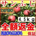 送料無料 糖度15度以上 長野 減農薬 有機肥料使用 サンふじ 約4.5kg 12〜25個入 ご家庭用 完熟 林檎 リンゴ りんご 訳あり 売れ筋 セール 産地直送 さんふじ 小山 ポイント10倍
