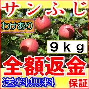 【訳あり】長野 減農薬 サンふじ 約9kg 24〜50個入 産地直送 りんご リンゴ 小山