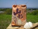 産地直送 全額返金保証 新米 山形県産 はえぬき 白米/玄米 5kg 庄内米 3h