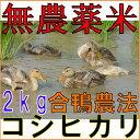 【ポイント合計14倍+100円OFFクーポン対象】【全額返金...