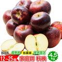 訳あり 減農薬 長野 秋映 りんご 約4.5kg 12〜25...