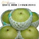 訳あり 減農薬 長野 二十世紀 梨 約9キロ 24〜30個入 産地直送 20世紀梨 20世紀 二十世紀梨 和梨 SSS