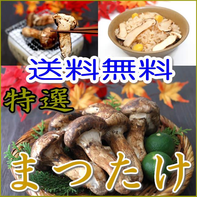 中国産 松茸 つぼみ〜中椀 約800g 4〜8本程度入 すだち付き マツタケ まつたけ