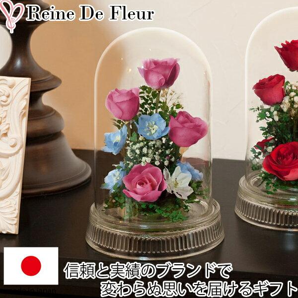 ドライフラワーボトルフラワーレンデフロールH-V新築祝い開業祝い花ギフト母の日定年祝い楽ギフ 包装楽