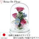 ドライフラワー ボトルフラワー レンデフロール R-E 新築祝い 開業祝い 花ギフト 母の日 定年祝い