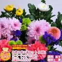 お供え花2束セット(一対)ピンク・レッド・複色からカーネーシ...