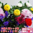 【送料無料】【あす楽】【配送日指定】お供え 花 2束セット(...