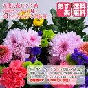 ファルチェ楽天市場店で使える500円OFFクーポン!!