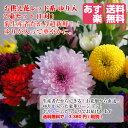 【送料無料】【あす楽】【配送日指定】お供え 花 2束セット(一対)レッド系 ゆり入り 菊生産者 新鮮