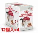 【正規品】ロイヤルカナン インスティンクティブ グレービー1〜10歳の健康な成猫用1ケ