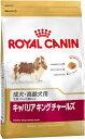 【正規品】ロイヤルカナン キャバリアキングチャールズ成犬・高齢用1.5kg生後10ヶ月齢以上 (52902071)