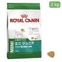 【正規品】ロイヤルカナン ミニジュニア 2kg(52901088)
