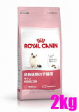 【正規品】ロイヤルカナン キトン 2kg生後12ヵ月齢の子猫用(メインクーン:15ヵ月齢まで)(52905070)
